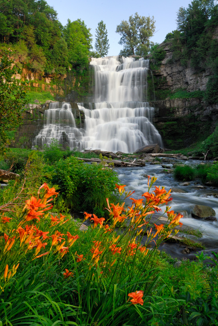 Day lilies and falls