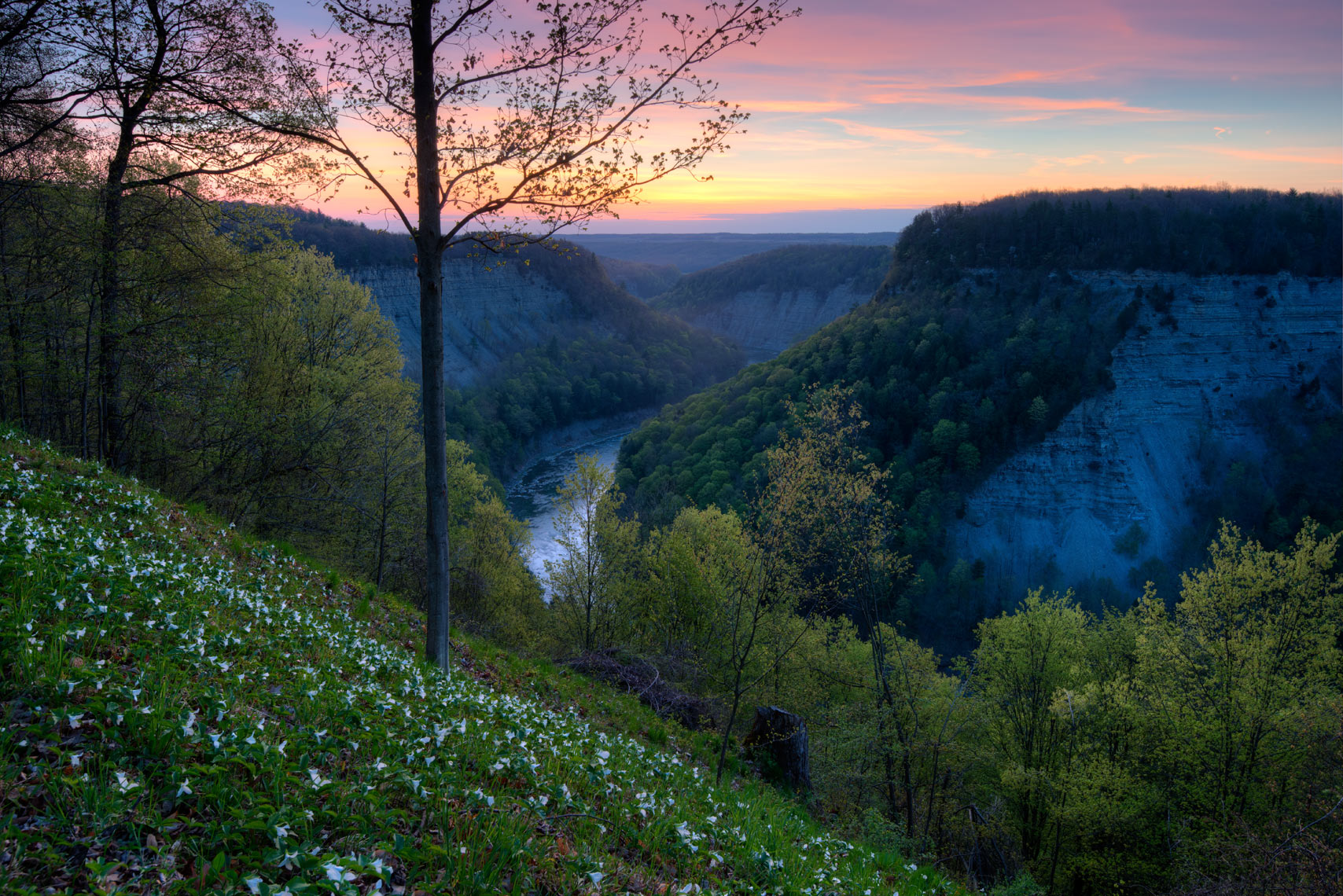 Genesee River Gorge at Dawn, Letchworth State Park, Finger Lakes, New York State