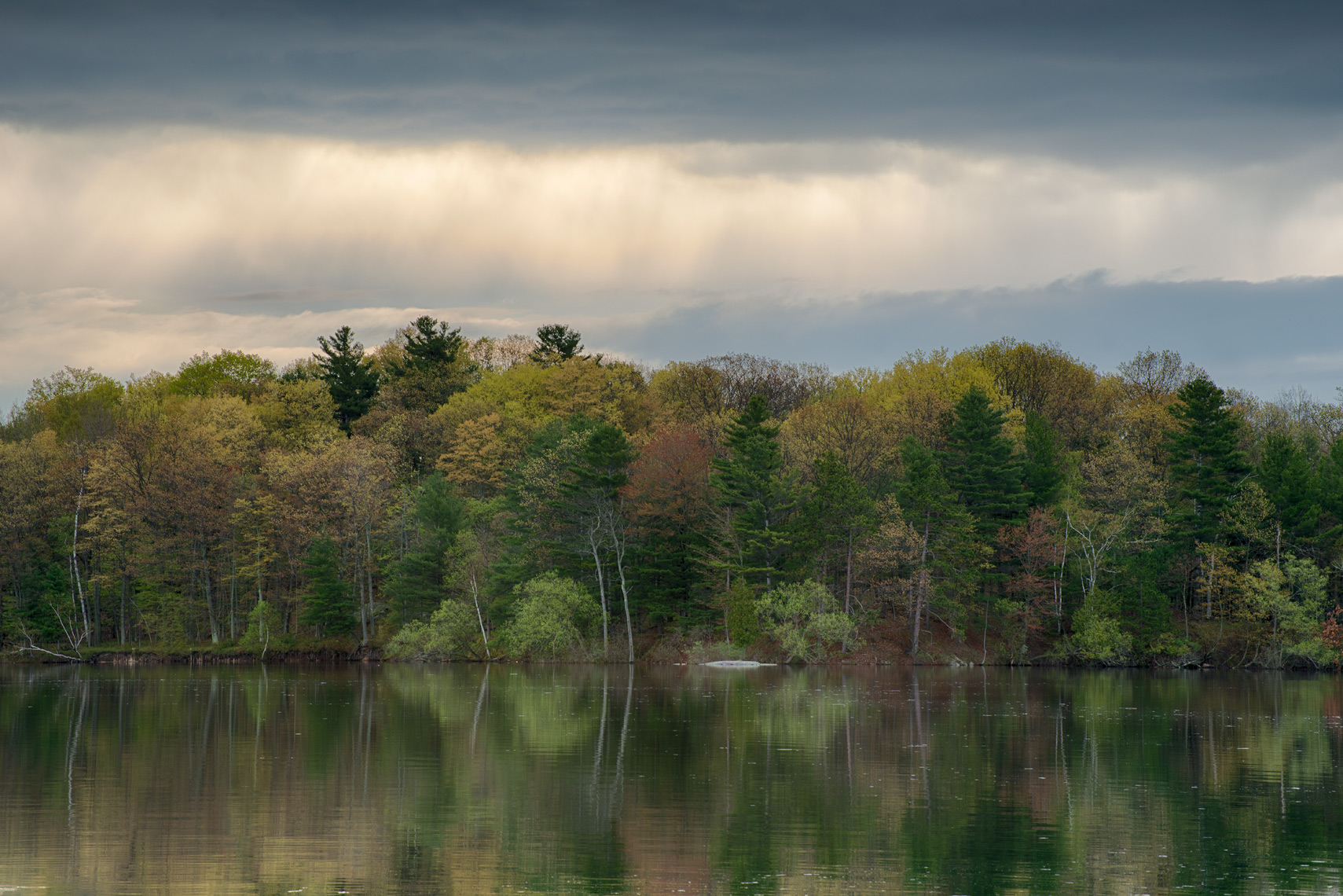 Spring Foliage and Storm Clouds