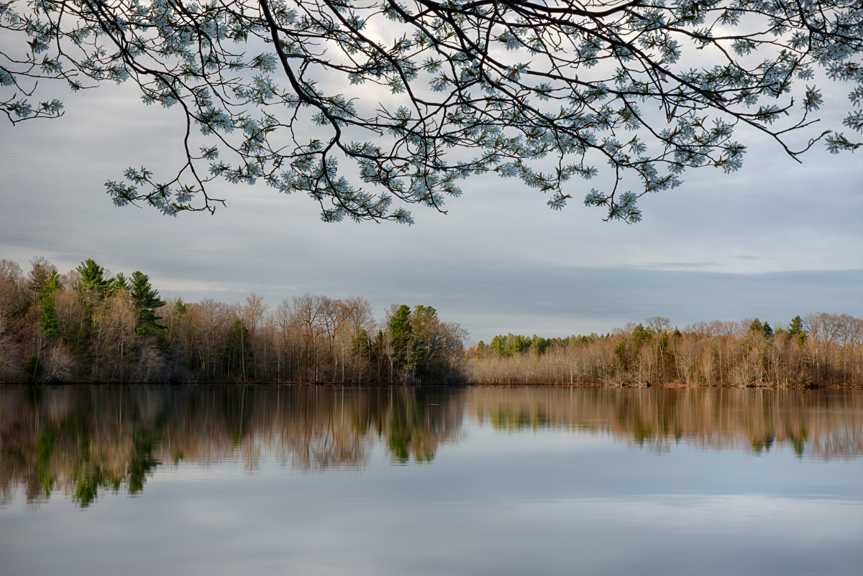 April Morning, Beaver Lake Nature Center, New York State