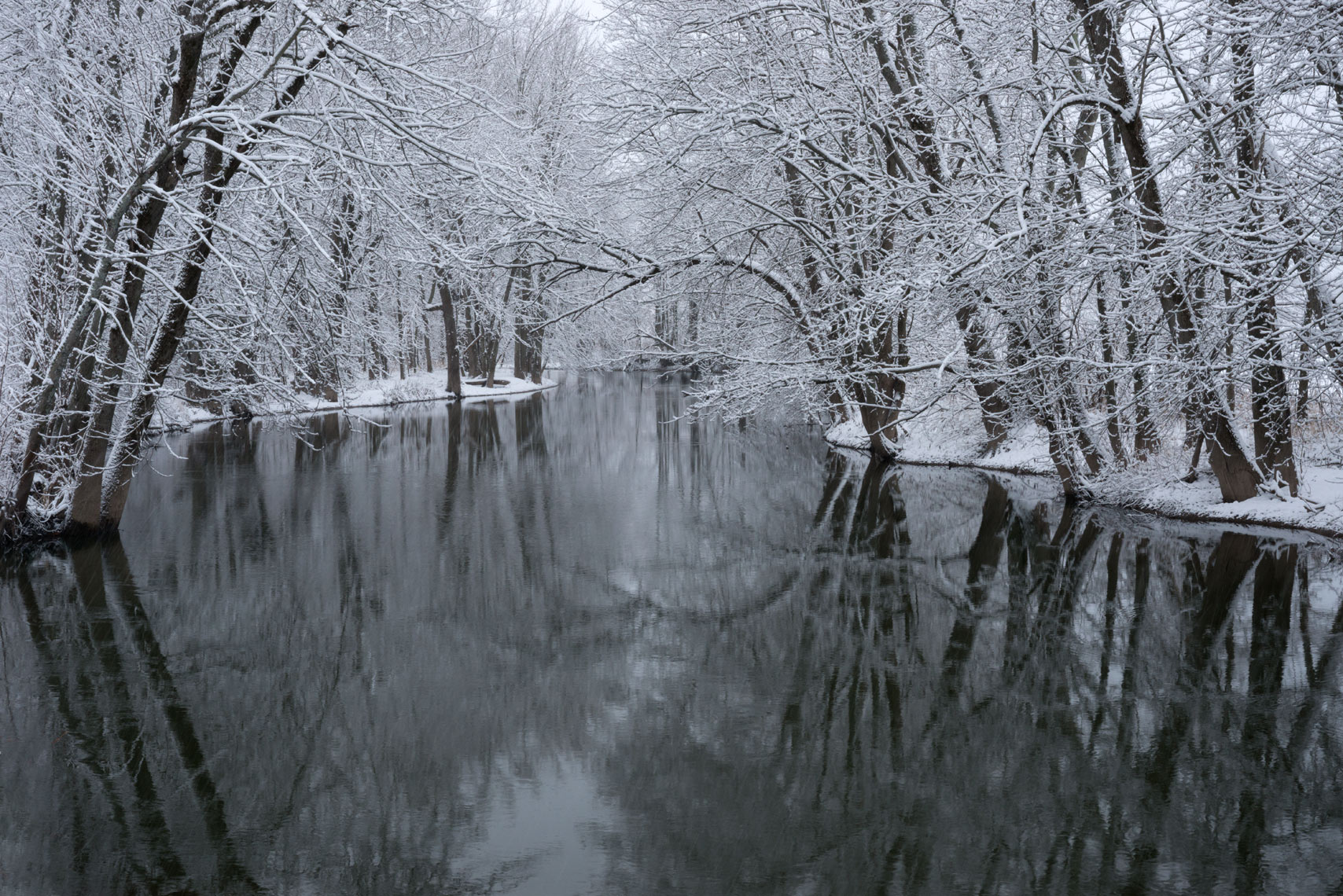 Snow Covered Trees along Chittenango Creek