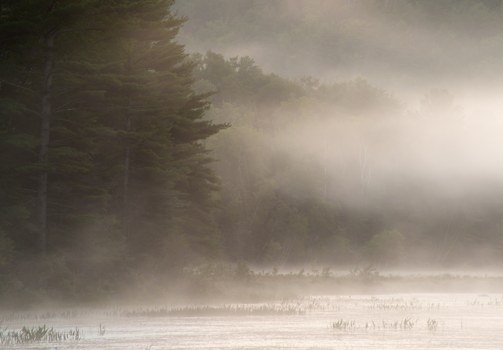 Morning Mist on Cod Pond, Adirondack Mountains, New York State