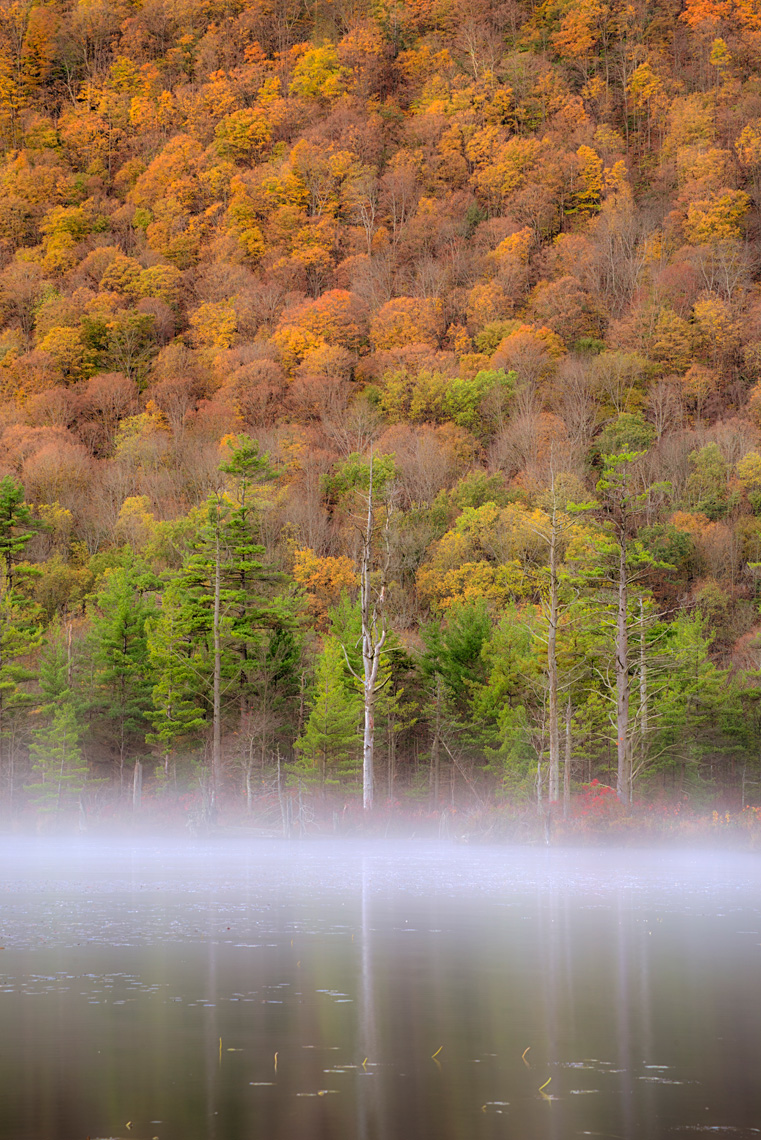 Mist on Labrador Pond in Autumn, Labrador Hollow Unique Area, New York State