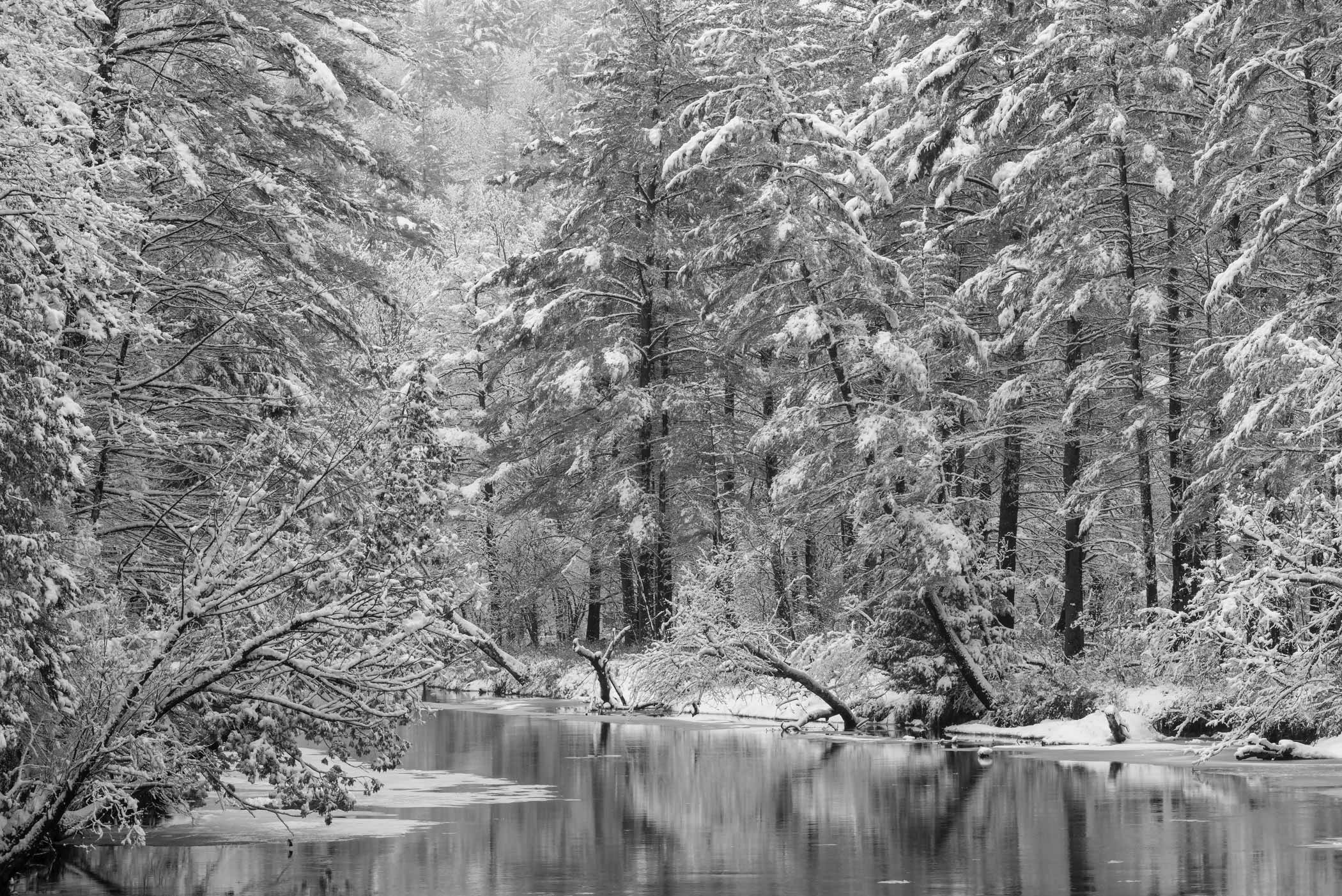 Ausable Winter