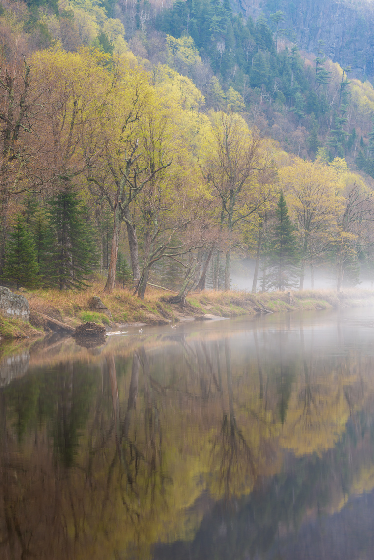 Spring Along the Ausable
